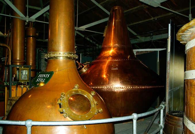 Whisky Guide für Einsteiger